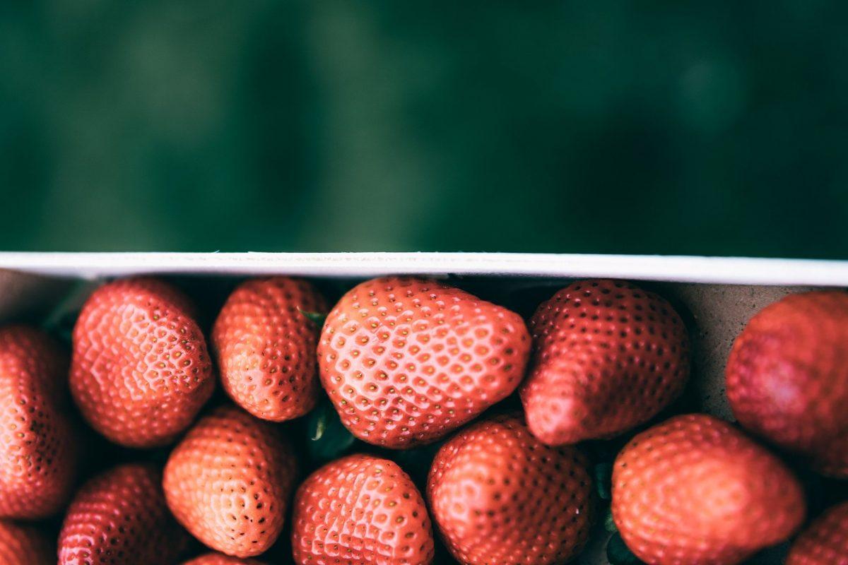 Recette soupe rhubarbe et fraises